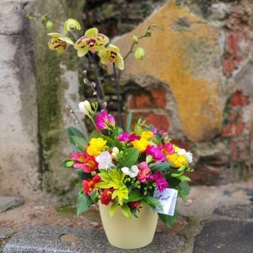Aranjament cu orhidee și flori proaspete de sezon
