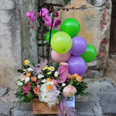 Surpriză cu orhidee, flori proaspete și baloane