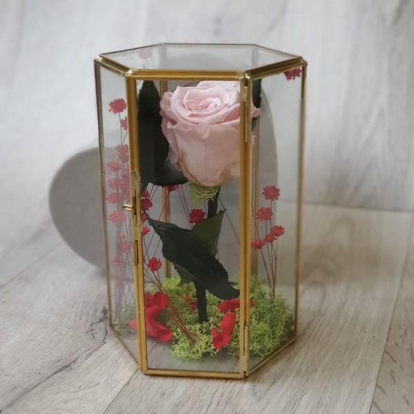 Suport de sticlă cu trandafir roz stabilizat