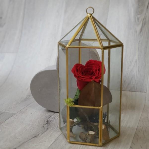 Suport de sticlă cu trandafir inimă stabilizat