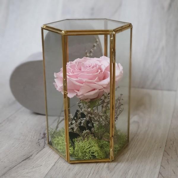 Suport de sticlă cu trandafir roz stabilizat XXL