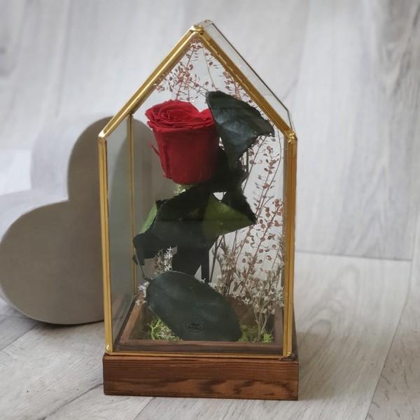 Suport de sticlă cu trandafir stabilizat roșu inimioară