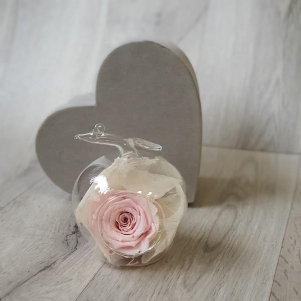 Glob de sticlă cu trandafir roz stabilizat