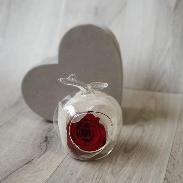 Glob de sticlă cu trandafir roșu stabilizat