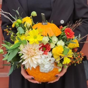 Aranjament cu diverse flori în dovleac